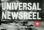 Image of Horse named Pompoon New York United States USA, 1936, second 18 stock footage video 65675022412