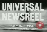 Image of Horse named Pompoon New York United States USA, 1936, second 20 stock footage video 65675022412