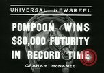 Image of Horse named Pompoon New York United States USA, 1936, second 29 stock footage video 65675022412