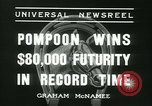 Image of Horse named Pompoon New York United States USA, 1936, second 30 stock footage video 65675022412
