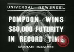 Image of Horse named Pompoon New York United States USA, 1936, second 31 stock footage video 65675022412