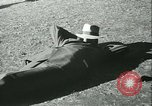 Image of Horse named Pompoon New York United States USA, 1936, second 44 stock footage video 65675022412