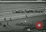 Image of Horse named Pompoon New York United States USA, 1936, second 50 stock footage video 65675022412