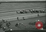 Image of Horse named Pompoon New York United States USA, 1936, second 51 stock footage video 65675022412