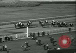 Image of Horse named Pompoon New York United States USA, 1936, second 54 stock footage video 65675022412