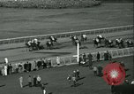 Image of Horse named Pompoon New York United States USA, 1936, second 55 stock footage video 65675022412