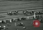 Image of Horse named Pompoon New York United States USA, 1936, second 56 stock footage video 65675022412