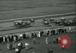 Image of Horse named Pompoon New York United States USA, 1936, second 57 stock footage video 65675022412