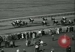 Image of Horse named Pompoon New York United States USA, 1936, second 58 stock footage video 65675022412