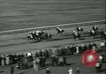 Image of Horse named Pompoon New York United States USA, 1936, second 59 stock footage video 65675022412
