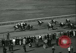 Image of Horse named Pompoon New York United States USA, 1936, second 60 stock footage video 65675022412