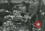 Image of Herring and Bloater fishes United Kingdom, 1934, second 5 stock footage video 65675022441
