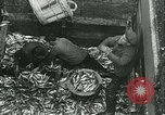 Image of Herring and Bloater fishes United Kingdom, 1934, second 13 stock footage video 65675022441