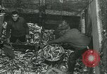 Image of Herring and Bloater fishes United Kingdom, 1934, second 16 stock footage video 65675022441