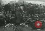 Image of Herring and Bloater fishes United Kingdom, 1934, second 18 stock footage video 65675022441