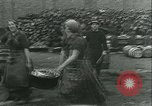 Image of Herring and Bloater fishes United Kingdom, 1934, second 24 stock footage video 65675022441