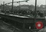 Image of Herring and Bloater fishes United Kingdom, 1934, second 29 stock footage video 65675022441