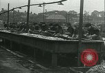 Image of Herring and Bloater fishes United Kingdom, 1934, second 30 stock footage video 65675022441