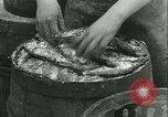 Image of Herring and Bloater fishes United Kingdom, 1934, second 36 stock footage video 65675022441