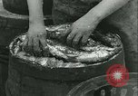 Image of Herring and Bloater fishes United Kingdom, 1934, second 37 stock footage video 65675022441