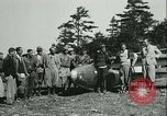 Image of Motor-less glider aircraft Elmira New York USA, 1931, second 21 stock footage video 65675022477
