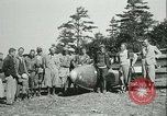 Image of Motor-less glider aircraft Elmira New York USA, 1931, second 25 stock footage video 65675022477