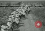 Image of Sugarcane Field Taiwan, 1958, second 16 stock footage video 65675022486