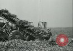 Image of Sugarcane Field Taiwan, 1958, second 39 stock footage video 65675022486