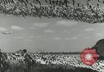 Image of camouflaged field United States USA, 1941, second 11 stock footage video 65675022502