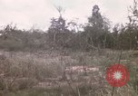 Image of United States 50th Infantry Vietnam, 1967, second 33 stock footage video 65675022581