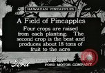 Image of Pineapple harvested Hawaii USA, 1916, second 2 stock footage video 65675022622