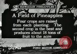 Image of Pineapple harvested Hawaii USA, 1916, second 5 stock footage video 65675022622