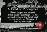 Image of Pineapple harvested Hawaii USA, 1916, second 8 stock footage video 65675022622
