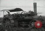 Image of Sugarcane fields Hawaii USA, 1916, second 13 stock footage video 65675022626