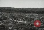 Image of Sugarcane fields Hawaii USA, 1916, second 26 stock footage video 65675022626