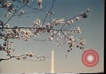 Image of American Monuments Washington DC USA, 1975, second 59 stock footage video 65675022747