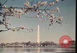 Image of American Monuments Washington DC USA, 1975, second 61 stock footage video 65675022747