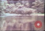 Image of Birch tree Canoe United States USA, 1975, second 22 stock footage video 65675022754