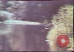 Image of Birch tree Canoe United States USA, 1975, second 24 stock footage video 65675022754