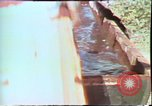 Image of Birch tree Canoe United States USA, 1975, second 34 stock footage video 65675022754
