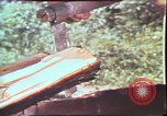 Image of Birch tree Canoe United States USA, 1975, second 35 stock footage video 65675022754
