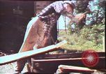 Image of Birch tree Canoe United States USA, 1975, second 36 stock footage video 65675022754
