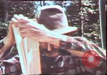Image of Birch tree Canoe United States USA, 1975, second 38 stock footage video 65675022754