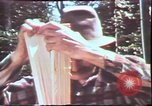 Image of Birch tree Canoe United States USA, 1975, second 39 stock footage video 65675022754