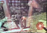 Image of Birch tree Canoe United States USA, 1975, second 41 stock footage video 65675022754