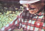 Image of Birch tree Canoe United States USA, 1975, second 44 stock footage video 65675022754