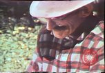 Image of Birch tree Canoe United States USA, 1975, second 48 stock footage video 65675022754