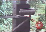Image of Birch tree Canoe United States USA, 1975, second 52 stock footage video 65675022754