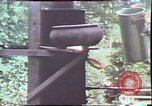 Image of Birch tree Canoe United States USA, 1975, second 53 stock footage video 65675022754
