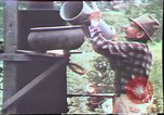 Image of Birch tree Canoe United States USA, 1975, second 55 stock footage video 65675022754
